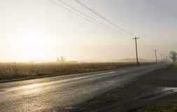 EARLY MORNING FOG ON COUNTRY ROAD Royalty Free Stock Photo
