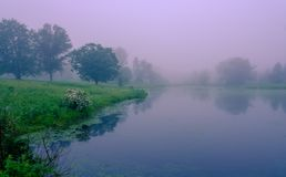 Early morning fog on the lake. Misty pond with water reflections. Deserted place, beautiful park view. stock photography