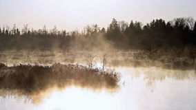 Early morning fog and mist covering Marshlands Royalty Free Stock Photo