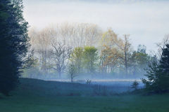 Early morning fog,springtime. Stock Photos
