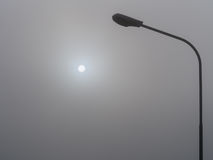 Early morning fog. Royalty Free Stock Image