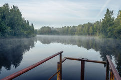 Early morning on the forest lake. stock images