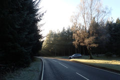 Early morning frosty road scene with forest, and silver estate car in background. Frosty morning in late Autumn, early Winter. Scene of a silver estate, variant royalty free stock photo