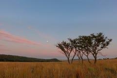 Early morning full moon at Ezemvelo Stock Photos