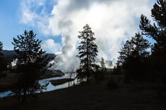 Early Morning Geysers at Yellowstone. Stock Image