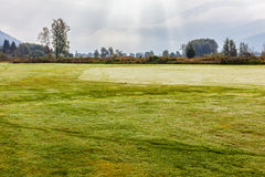 Early morning on the golf course. A idyllic meadow or golf course in a sunny beautiful morning Royalty Free Stock Photography
