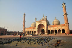 Early morning at Jama Masjid Royalty Free Stock Photography