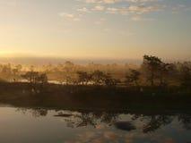 Early morning in Kakerdaja marsh Stock Image