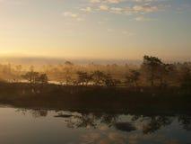 Early morning in Kakerdaja marsh Royalty Free Stock Photos