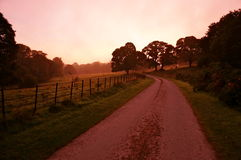 Early morning killarney. Morning in killarney national park Royalty Free Stock Photos