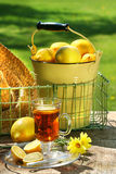 Early morning lemon tea Stock Image