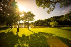 Early morning in public park Stock Image