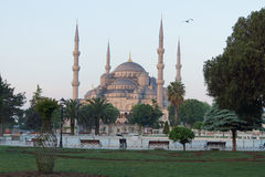 Early morning light on  Sultan Ahmet Camii Royalty Free Stock Photos
