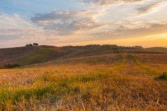 Early morning light  in the Tuscany. Early morning light in the Tuscany region of Italy Stock Images