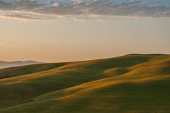 Early morning light  in the Tuscany. Region of Ital Royalty Free Stock Images