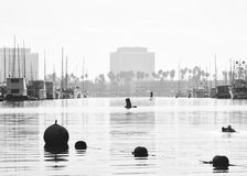 Early Morning in Marina Del Ray Stock Image