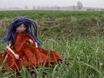 Rag doll with blue hair and a red dress in the grass with dew drops stock image