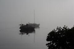 Early morning Mist royalty free stock photos