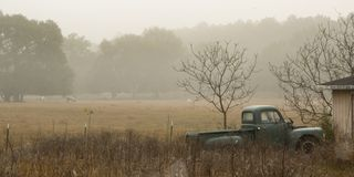 Old Truck and Horses in the Mist. Early morning mist and fog over a horse farm on a cool north Florida morning. Soft and ephemeral landscape on a quiet lane. Old Royalty Free Stock Photo