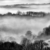 Early morning mist. Photographed in the Looe valley Cornwall, UK. This image, taken in the early morning, shows the early morning misty conditions which prevail Stock Images
