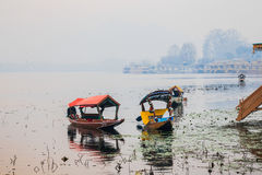 Early morning in nageen lake Royalty Free Stock Image