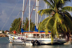 Early Morning On Tropical Harbor. Stock Photography