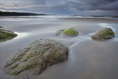 Early morning on Oregon beach. Royalty Free Stock Images