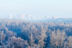 Early morning over forest and town in winter. Early morning over forest and town in cold winter Royalty Free Stock Photography