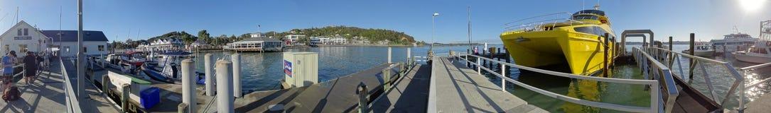 Early Morning at Paihia Harbor royalty free stock image