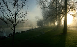 Early Morning Park Royalty Free Stock Photography