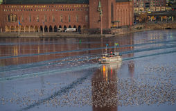 Early morning passenger ferry crossing the frozen water in front of Stockholm City Hall. Royalty Free Stock Photo