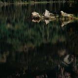 Early morning reflections on Taggart Lake, Grand Teton National Park, Wyoming royalty free stock photo