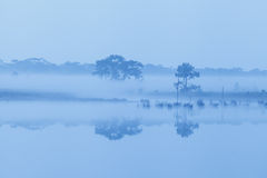 Early morning on river Stock Photos