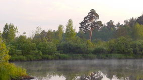 Early morning on the river with a lone tree and moving fog. Shot of the early morning on the river with a lone tree and moving fogn stock footage