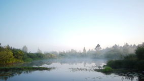 Early morning on the river with a lone tree and moving fog. Shot of the early morning on the river with a lone tree and moving fogn stock video footage