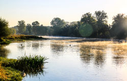 Early morning river scene with mist and trees Stock Images