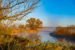 Early morning river sunrise royalty free stock photos