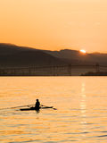 Early Morning Rowing. A rower captured on the water at daybreak Stock Photo