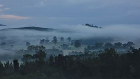Early morning in rural Australia Royalty Free Stock Photo