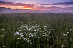 Early morning rural landscape. Royalty Free Stock Images