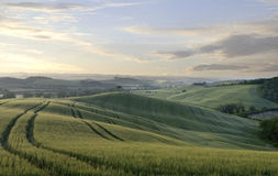 Early morning in rural Tuscany Royalty Free Stock Images