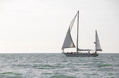 Early morning sailboat on the Gulf of Mexico. Stock Images