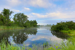Early morning scene on river Royalty Free Stock Photography