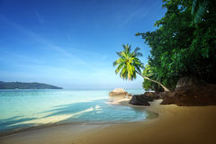 Early morning, Seychelles beach Royalty Free Stock Photography