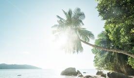Early morning, Seychelles beach Stock Image