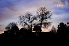 Free Early Morning Sky Stock Photos - 142645473