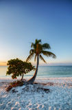 Sunrise on a beach. Early morning at Sombrero Beach at Marathon Island in Florida, USA Royalty Free Stock Image