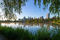 Morning Stroll at Stanley Park Vancouver BC Canada Royalty Free Stock Photos
