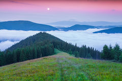 Early morning in the summer Carpathian mountains Stock Images