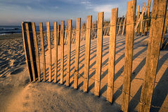 Early morning sun on beach fence Stock Image